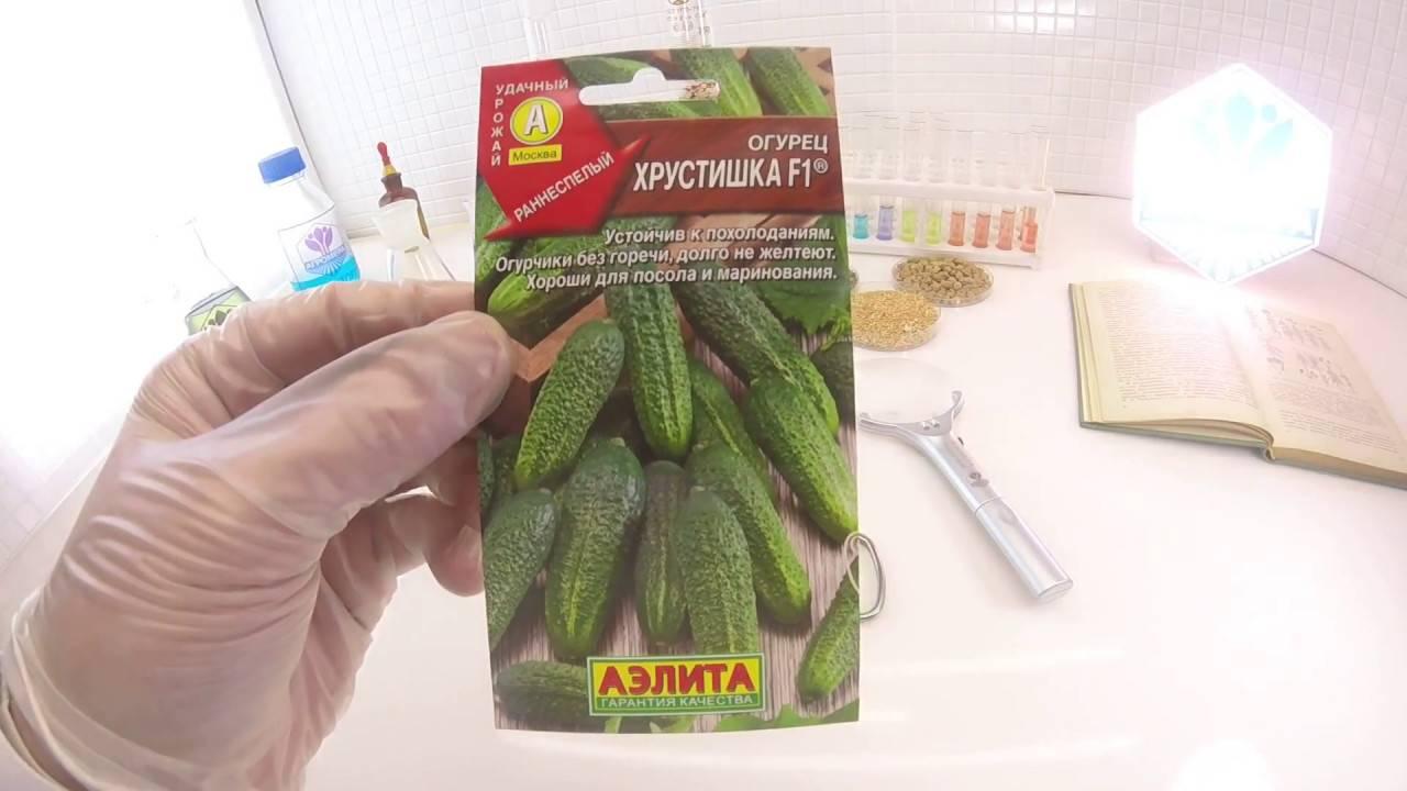 Особенности сорта огурцов «хрустик f1» и рекомендации по выращиванию