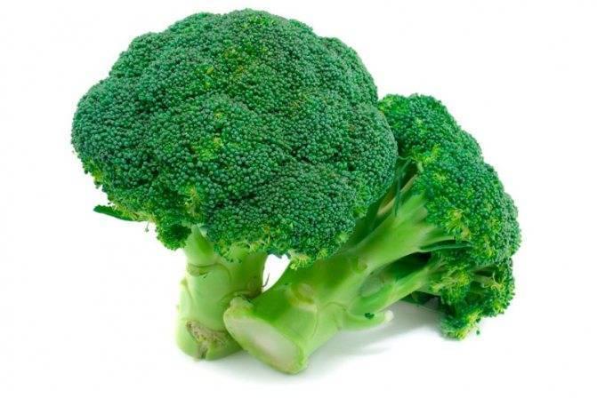 Какую капусту можно есть во время гв: белокочанная, цветная, брокколи и другие