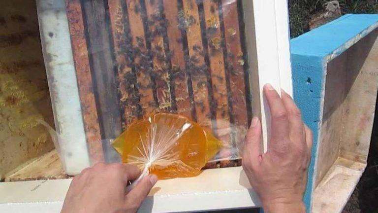 Осенняя подкормка пчел.