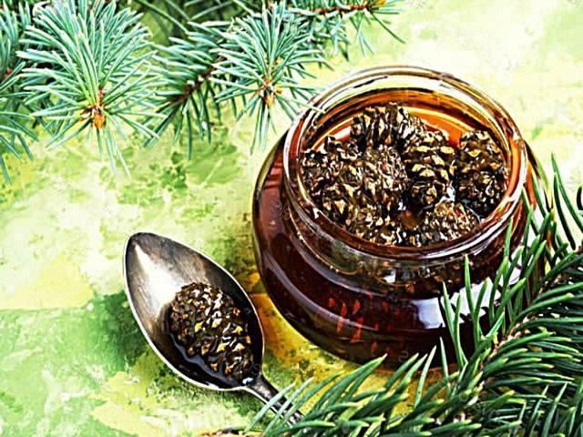Варенье из кедровых шишек: польза и противопоказания