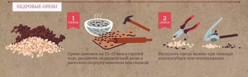 Как готовить настойку на кедровых шишках: на спирту, водке, самогоне и воде