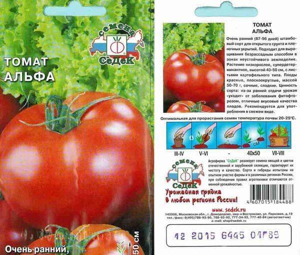 Лучшие низкорослые сорта томатов для открытого грунта и теплиц