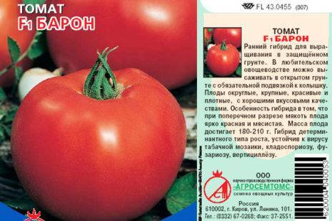 Томат катя f1: описание и характеристика раннего сорта, отзывы и фото тех, кто выращивал