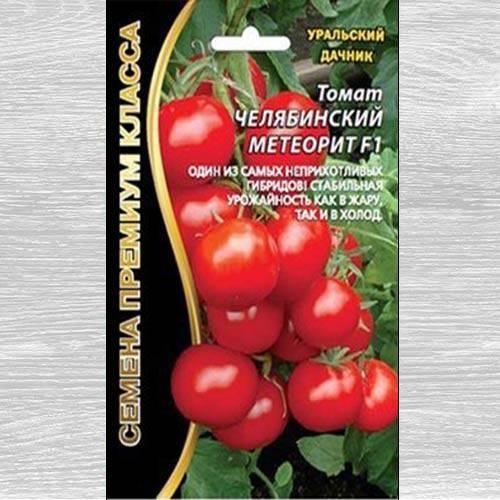 Как вырастить челябинский метеорит? полное описание и рекомендации по уходу за томатом