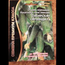 Огурцы сибирская гирлянда – перспективный сорт для разных регионов