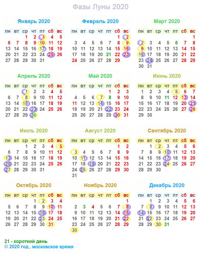 Высадка рассады баклажан в открытый грунт и теплицу по лунному календарю на 2020 год