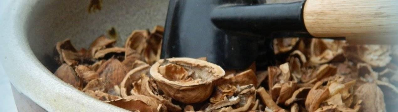 Чем полезны перегородки грецкого ореха и что из них можно сделать?