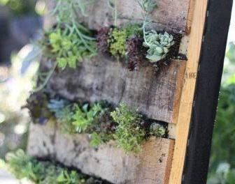 Виды конструкций для обустройства вертикального озеленения