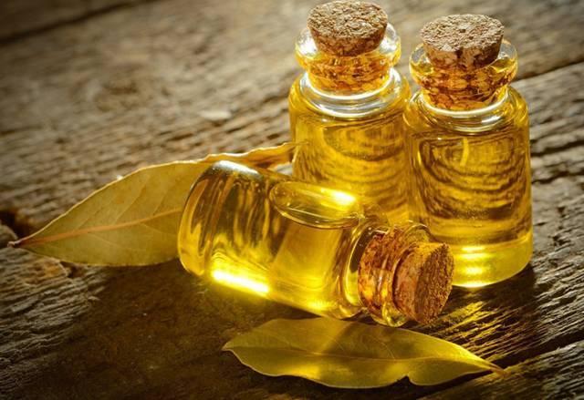 Пихтовое масло применение при остеохондрозе