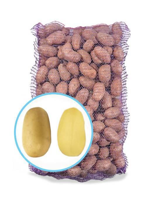 Описание картофеля гранада