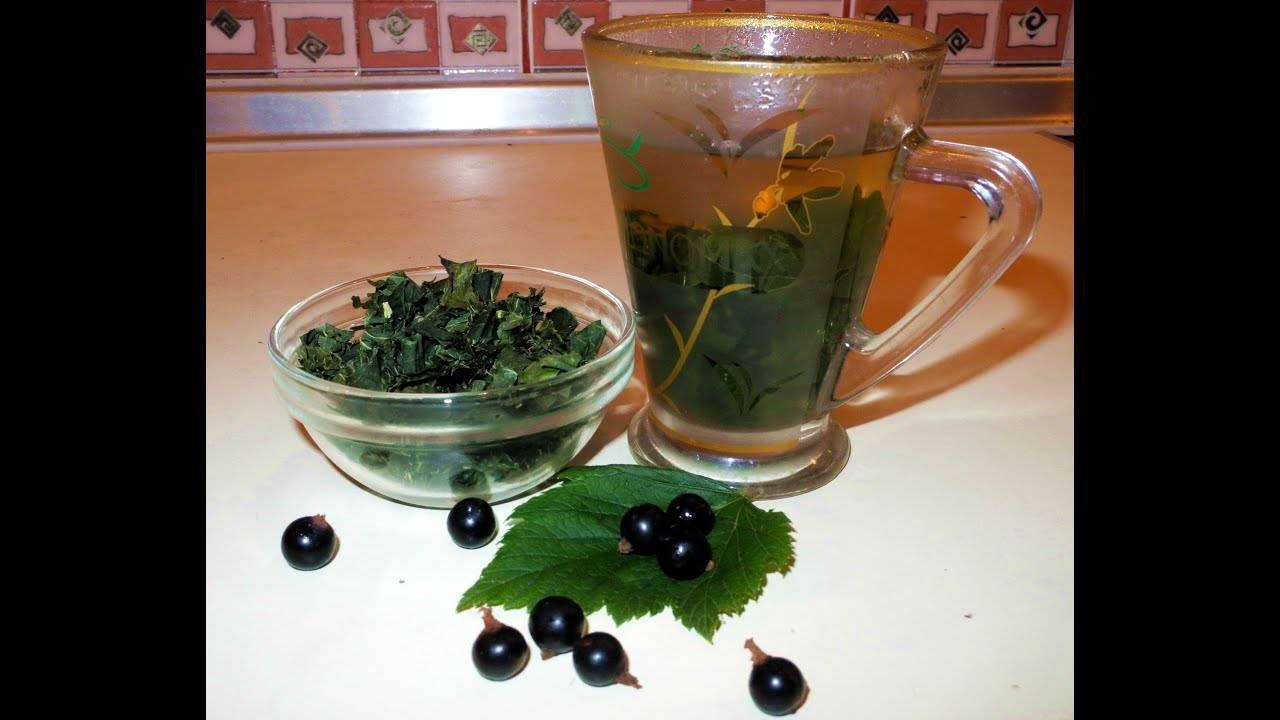 Чай ферментированный из листьев черной смородины