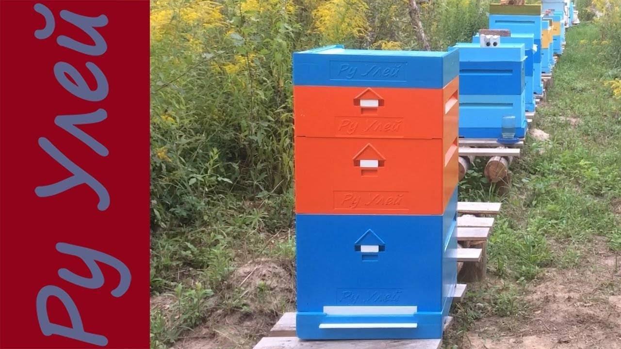 В помощь пчеловоду: ульи из пенополиуретана