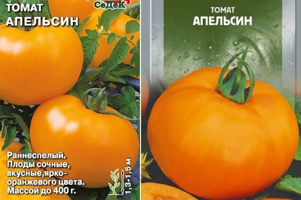 Томаты апельсин: отзывы, фото, описание и характеристика сорта