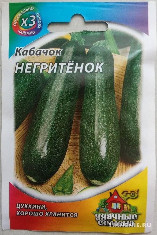 Кабачок негритенок - фото урожая, цены, отзывы и особенности выращивания