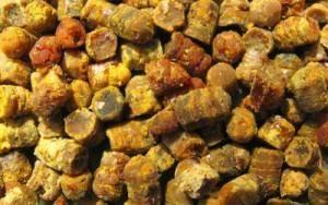 Интересные факты о пчелином прополисе: каков срок годности и условия хранения различных видов продукта?