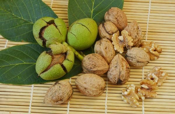Подкормка грецкого ореха