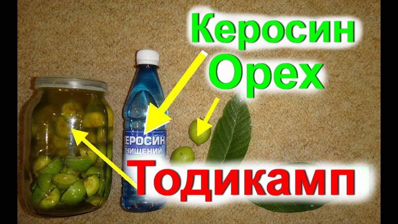 Настойка грецкого ореха на водке: способы приготовления