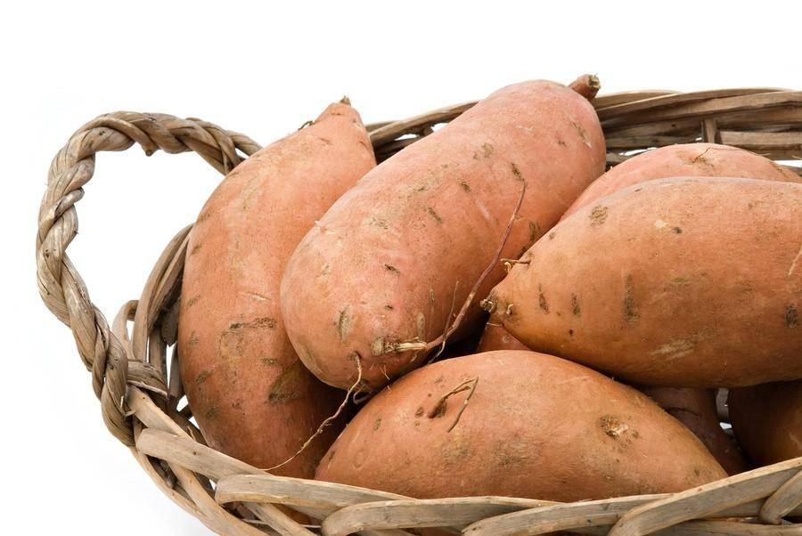 Картофель чародей — описание сорта, фото, отзывы, посадка и уход
