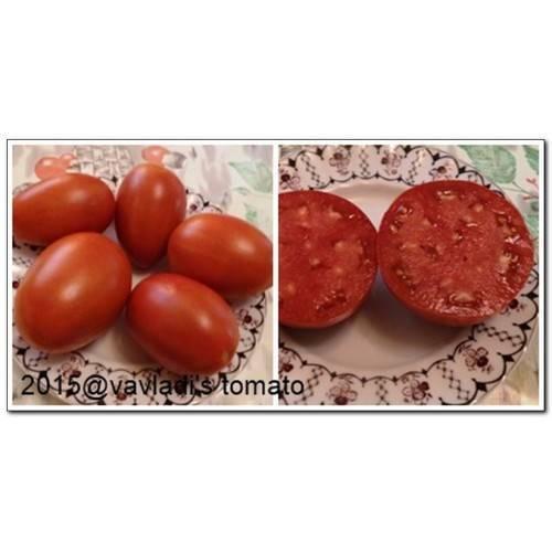 Качественный сорт заслуживающий внимания — томат минусинские розовые стаканы: полное описание помидоров