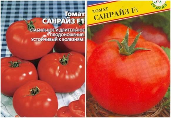 Выращивание томата санрайз