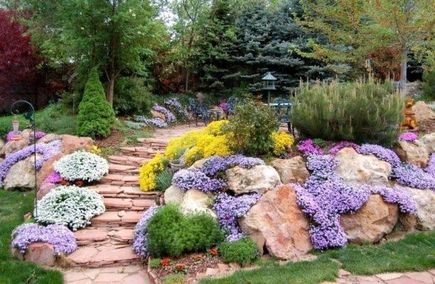 Многолетние цветы для сада: список растений с фото и названиями для рокария и каменистого сада