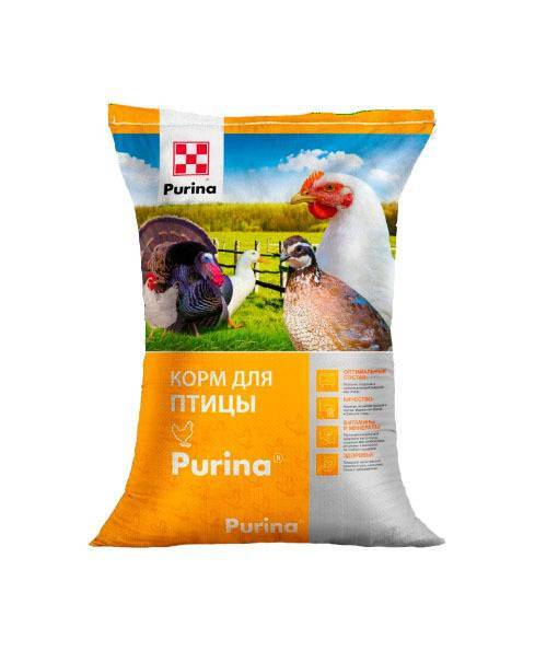 Корм для свиней пурина (purina): бвмд, бвмк, состав, отзывы, как давать