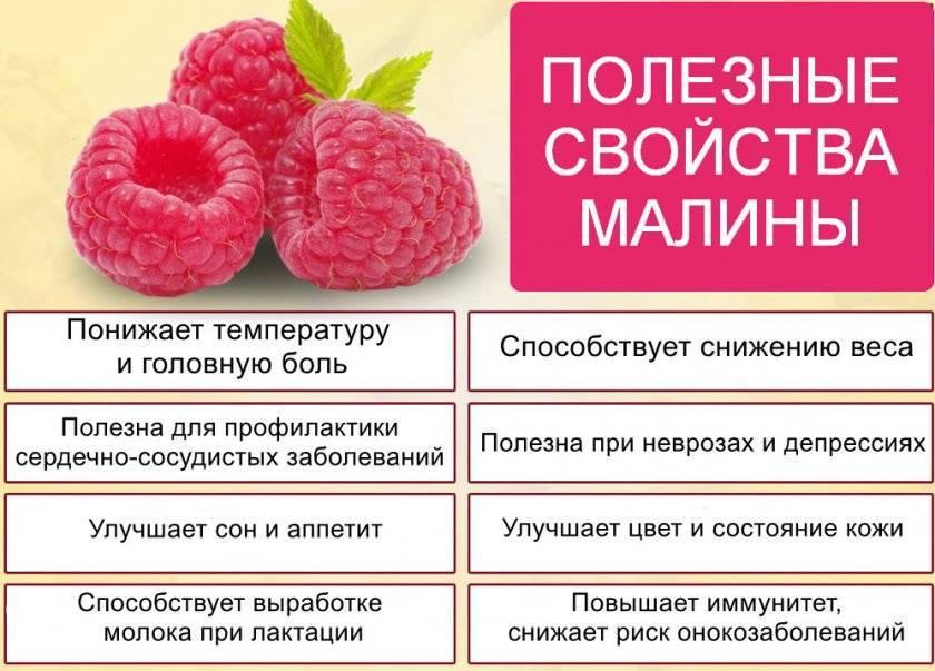 Использование малины при лечении болеющего ребенка с температурой
