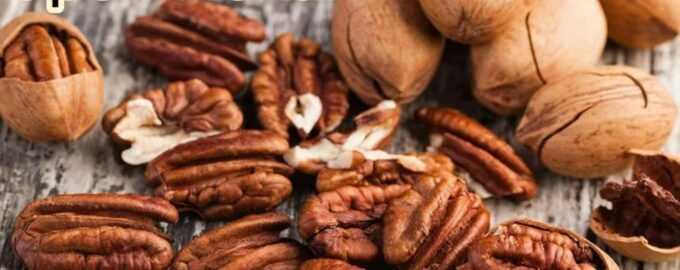 Орех пекан, его польза и вред