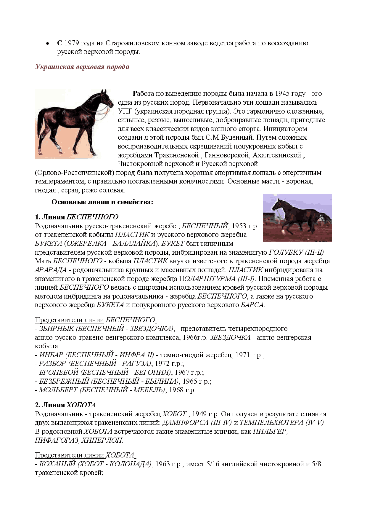 Лошадь породы битюг.история и характеристика породы