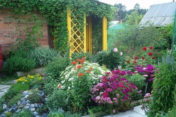 Цветы на даче: создание цветника своими руками - 75 фото