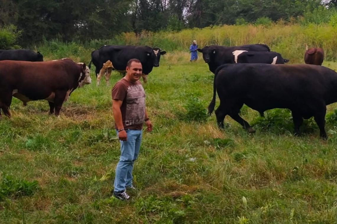 Животноводство на дачном участке в 2019 году: можно ли разводить скот и птицу на дачном участке, порядок, условия, првила содержания и законы, регулирующие разведение животных на даче | земельный эксперт