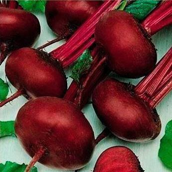 Морковь витаминная 6: описание сорта, отзывы, фото, урожайность