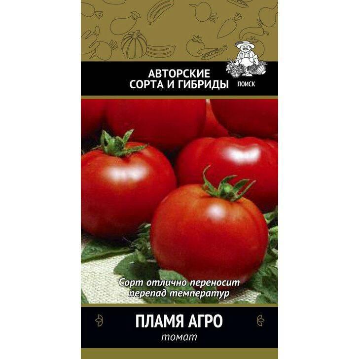 Практичный сорт помидор «белый налив 241»