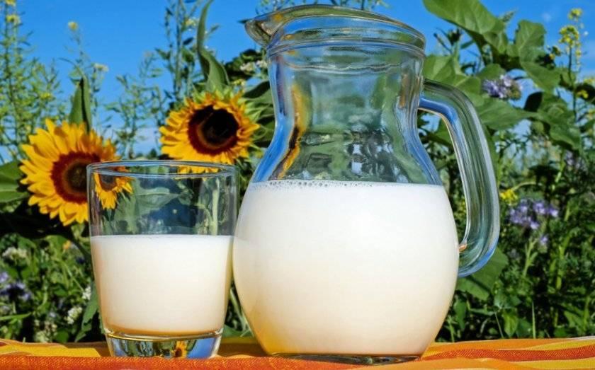 Почему у козы горчит молоко до и после окота: причины порчи, козьи болезни, как убрать запах — moloko-chr.ru