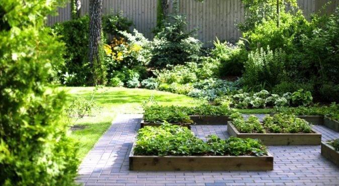 Благоустройство сада, огорода и газонов своими руками