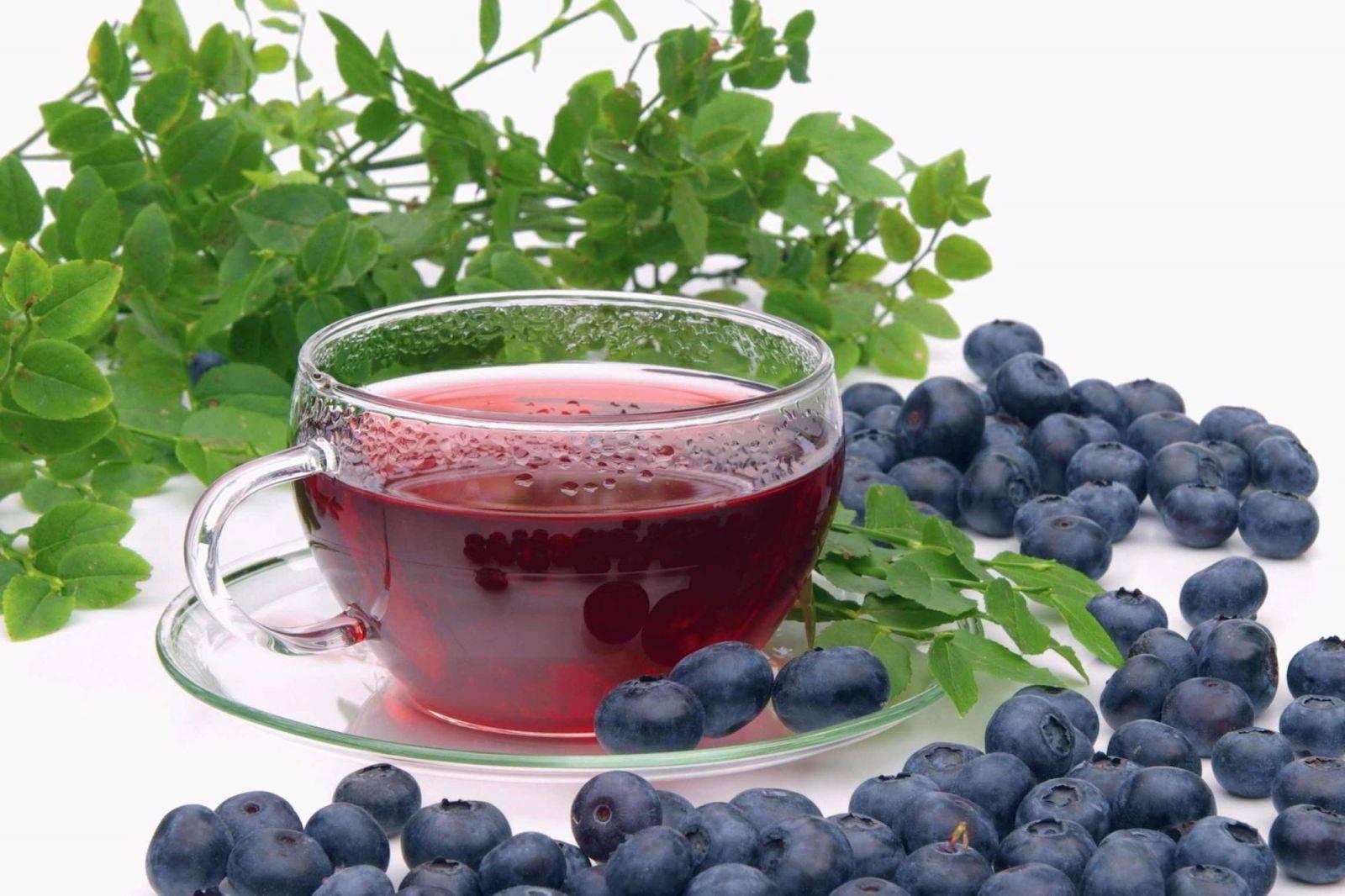 Листья черники лечебные свойства и противопоказания — ягоды грибы