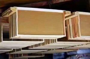Об улье дадан: размер рамки дадановского улья, улей дадана на 10 рамок, чертеж