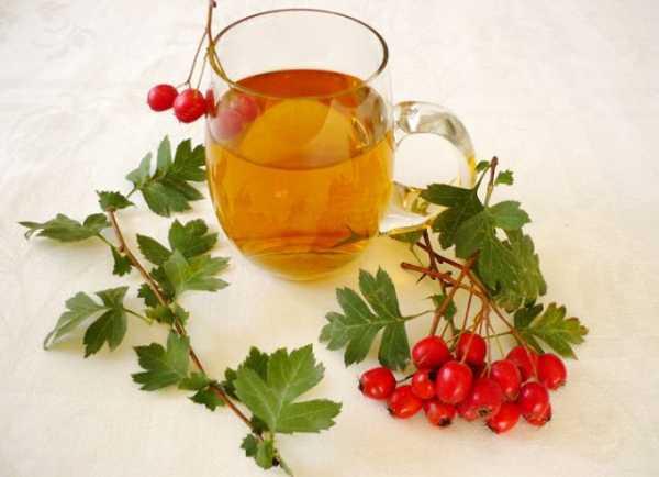 Чем полезны ягоды боярышника для женщин