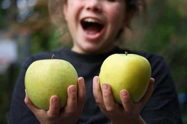 Яблоня Мутсу: описание, фото, где выращивают, отзывы