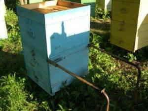 Необходимый инвентарь пчеловода, для успешного пчеловодства