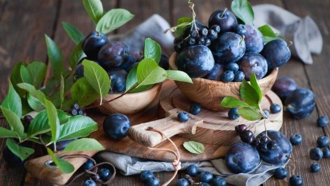Как вырастить голубику из семян в домашних условиях