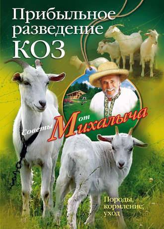 Русская белая порода – описание и признаки козы