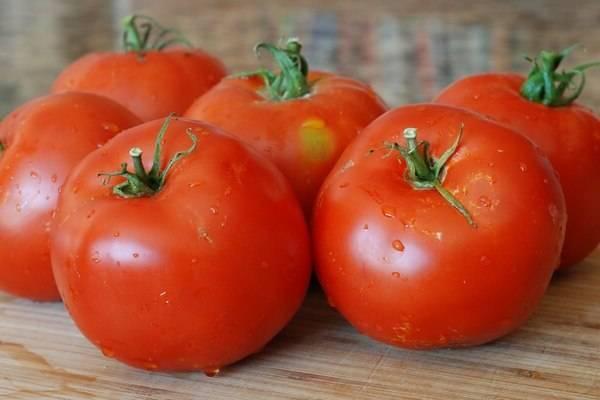 Ультраскороспелые сорта томатов: описание, помидоры для открытого грунта