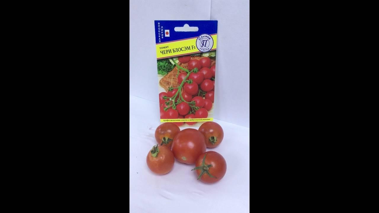 Описание и характеристика 15 лучших сортов помидоров черри