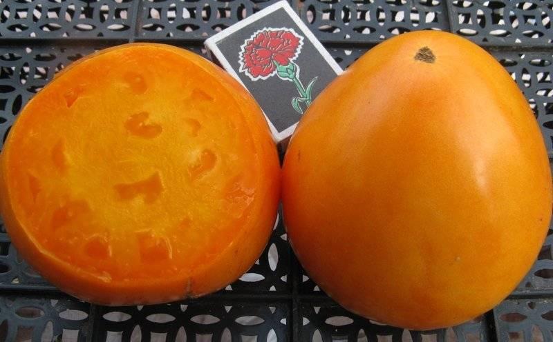 Сорт томата «оранжевое сердце»: описание, характеристика, посев на рассаду, подкормка, урожайность, фото, видео и самые распространенные болезни томатов