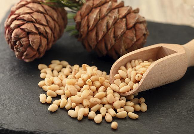 Кедровые орехи — польза и вред для организма | польза и вред