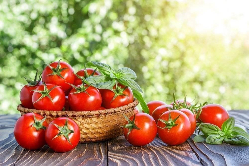 Характеристика томата сорта подарочный