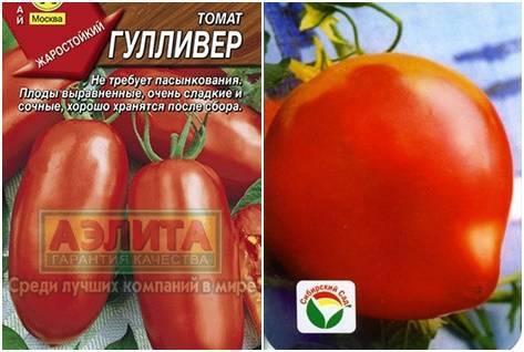 Лучший сорт для начинающих — томат «гулливер»: описание, фото, отзывы