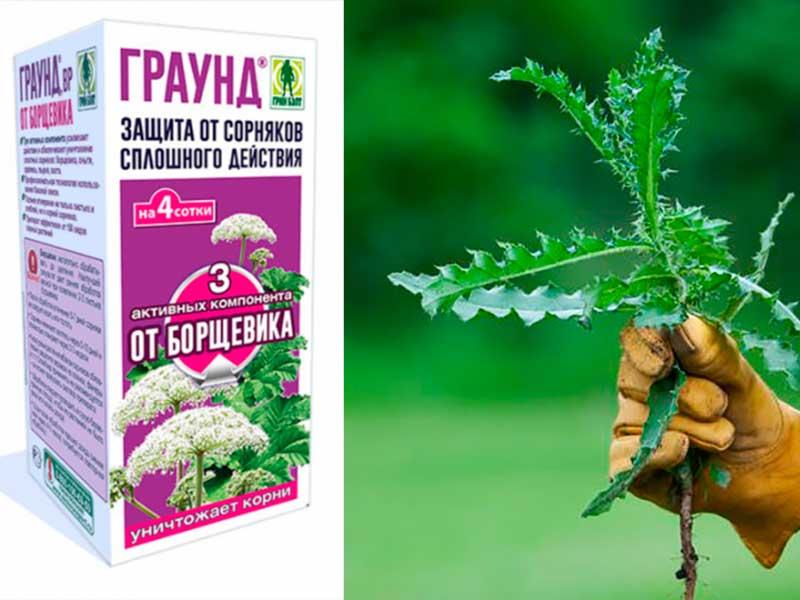 Граунд гербицид от сорняков