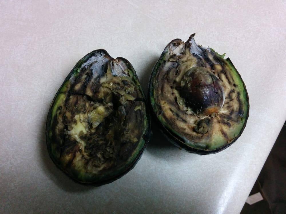 Как понять что авокадо испортился: 5 способов | пища это лекарство